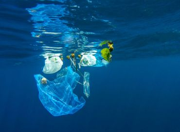 This 24 Year Old May Have a Plastic Pollution Solution