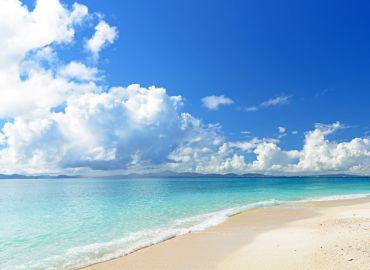 Keeping our seas plastic free - International Coastal Cleanup